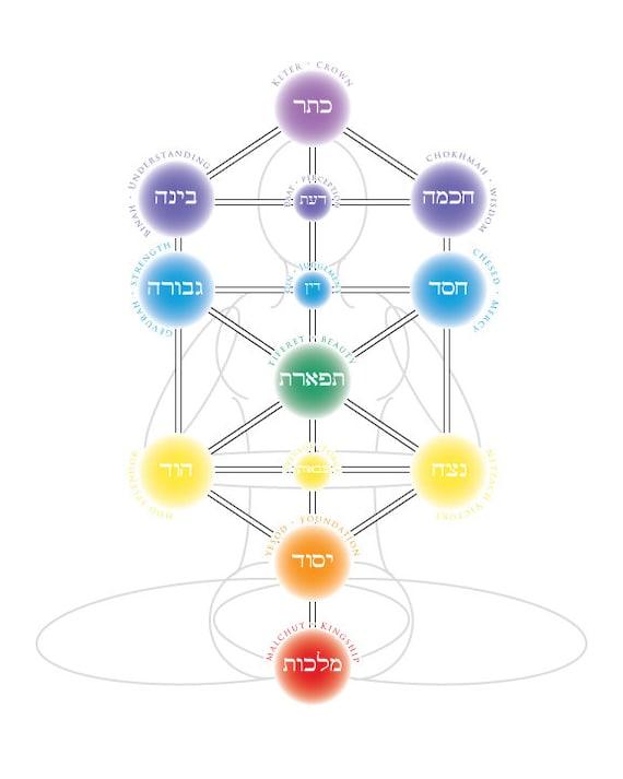 Chakras Tree Of Life Hebrew And English 8x10 Print Etsy Kabbalah tree of life alchemy jewish hebrew numerology spiritual chakras illustration. chakras tree of life hebrew and english 8x10 print