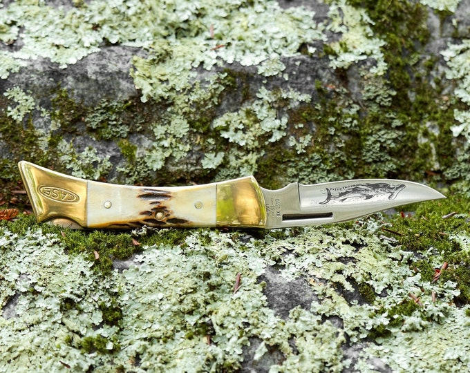 Case Hammerhead Lockback Knife 9 Dot 1981 Stag Handle