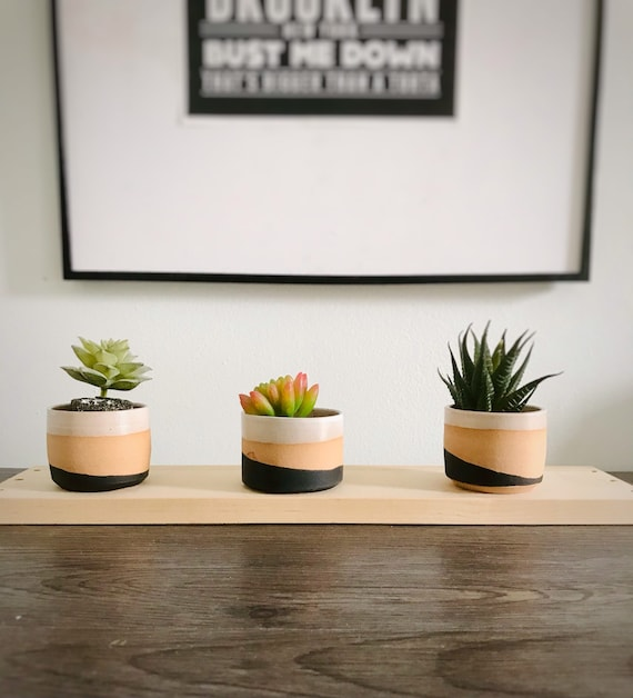 "2"" succulent holders- handmade ceramics- pack of three"