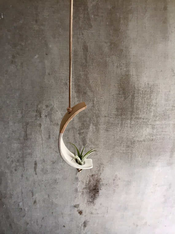 Hanging crescent moon Airplant holder- ceramic- plant vase arc- two tone white on beige stoneware- NEW!
