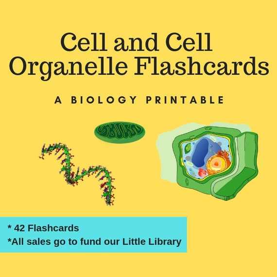 Cell Flashcards, Science Printable, Homeschool, Teacher, Cell Organelles,  Animal Cell, Plant Cell, Biology Flashcards, Instant Download