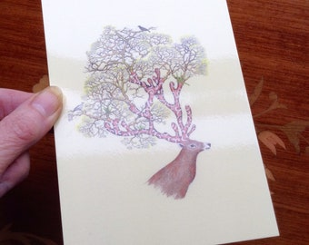 Postcard ' Brigghumassie'