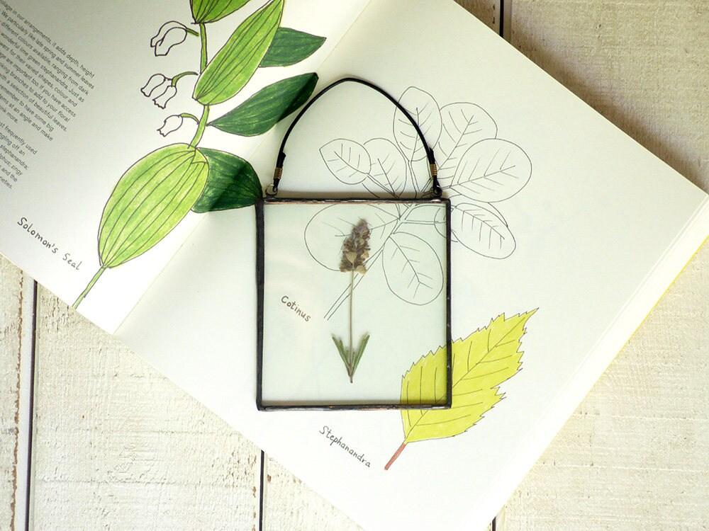 Hängen Rahmen Glasmalerei gepresste Blumen-Display erhalten | Etsy