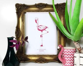 Flamingo - Pink - Print - von Nimmermehr
