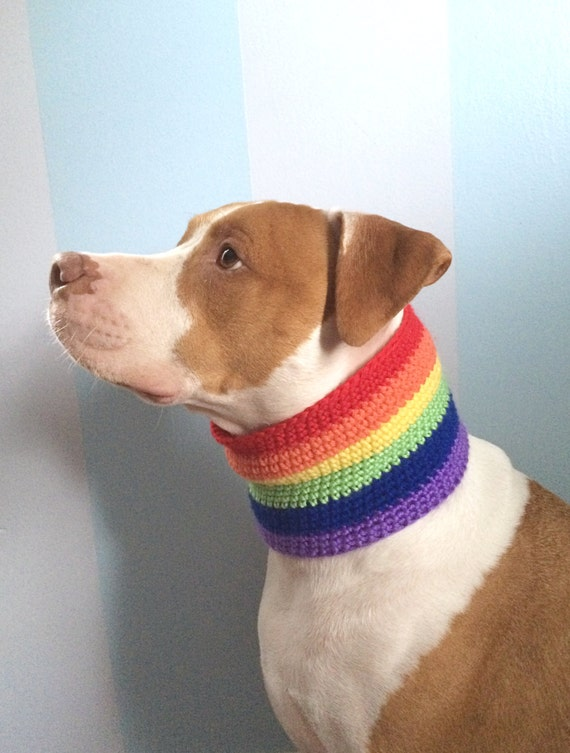 Rainbow Dog Scarf Gay Pride Dog Clothing Crochet Dog Clothes Etsy