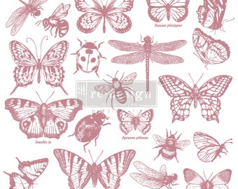"MONARCH COLLECTION Clearly Aligned Decor Stamp, Prima Redesign Stamp, Free Shipping, 12""x12"""
