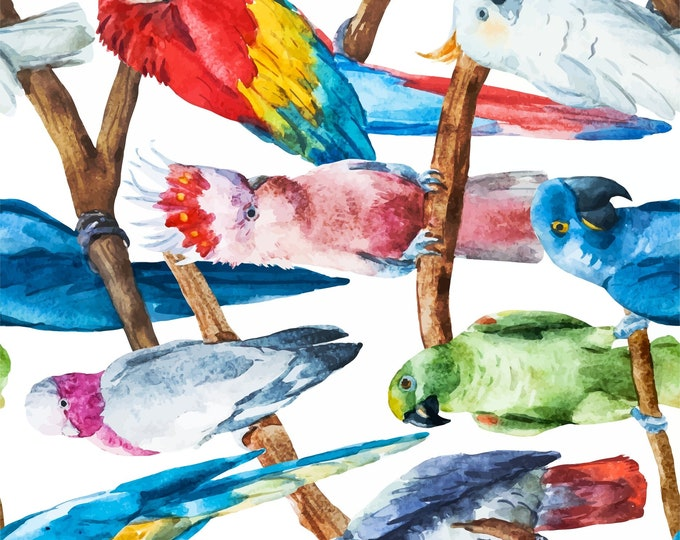New  Decoupage Rice Paper BIRDS, Dixie Belle, junk journal, mixed media, bird, parrot, 3 sheets per pack,   Free Shipping