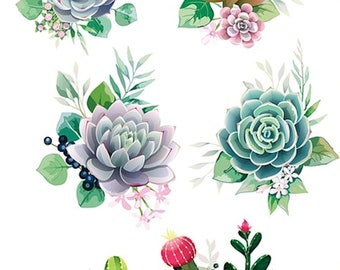 CACTUS Dixie Belle Rub On transfer with Free shipping, 6 sheet CACTUS  Transfers, succulents