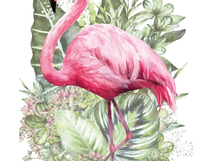 Flamant Rose Hokus Pocus transfer, Flamingo Transfer, New Furniture Transfers, Rub on Transfer,  Free shipping