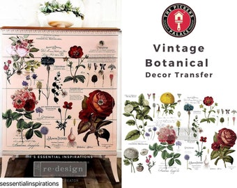 Vintage Botanical, floral Transfer , New Prima Transfer,  Redesign Decor Transfer Free Shipping
