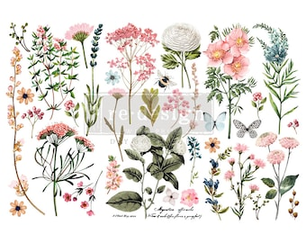 """Affordable transfers! Botanical Paradise Transfer Collection 12"""" X 6"""" with FREE Shipping"""