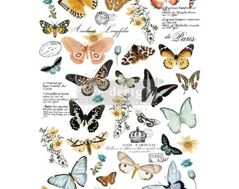 NEW FALL 2020 Butterfly Dance , New Prima Transfer,  Redesign Decor Transfer Free Shipping