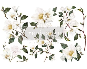 Magnolia Small  Rub on Furniture Transfer from Redesign with Prima. FREE Shipping,  12 x 6 transfers