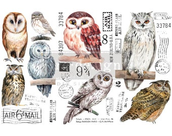 Owls Small  Rub on Furniture Transfer from Redesign with Prima. FREE Shipping,  12 x 6 transfers