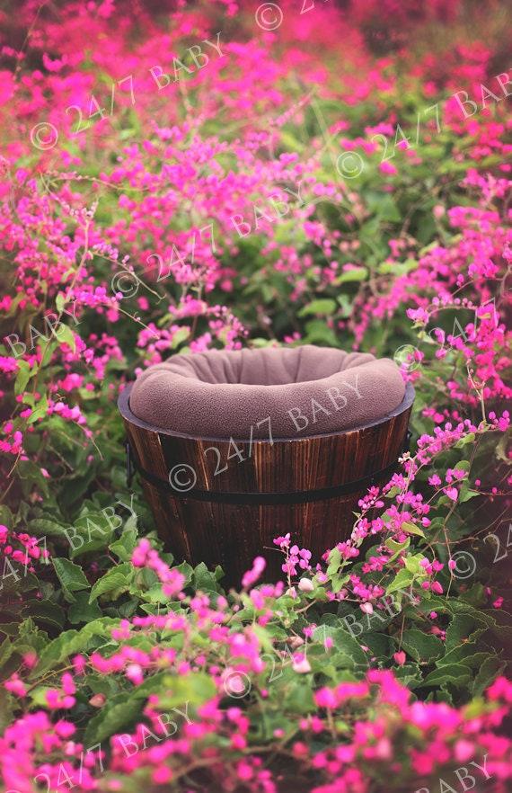 digital new born  backdrop  pink prop