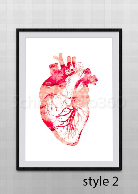 Heart Anatomy Watercolor Art Print Heart Anatomy Poster | Etsy