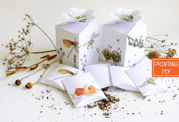 Seed Packet Favors Gardening Gift Box Template DIY Gifts