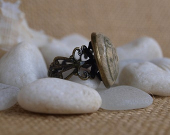 torino seal ring