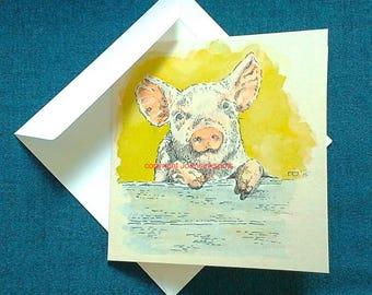 Card curious piglet