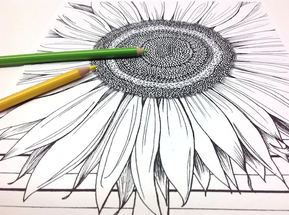 Sunflower Coloring Page Floral Mandala