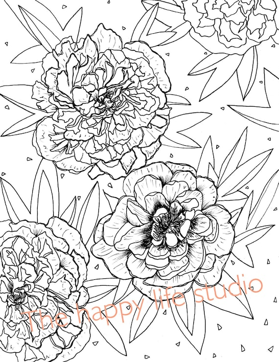 Peony Coloring Page Flower coloring page Peonies drawing   Etsy