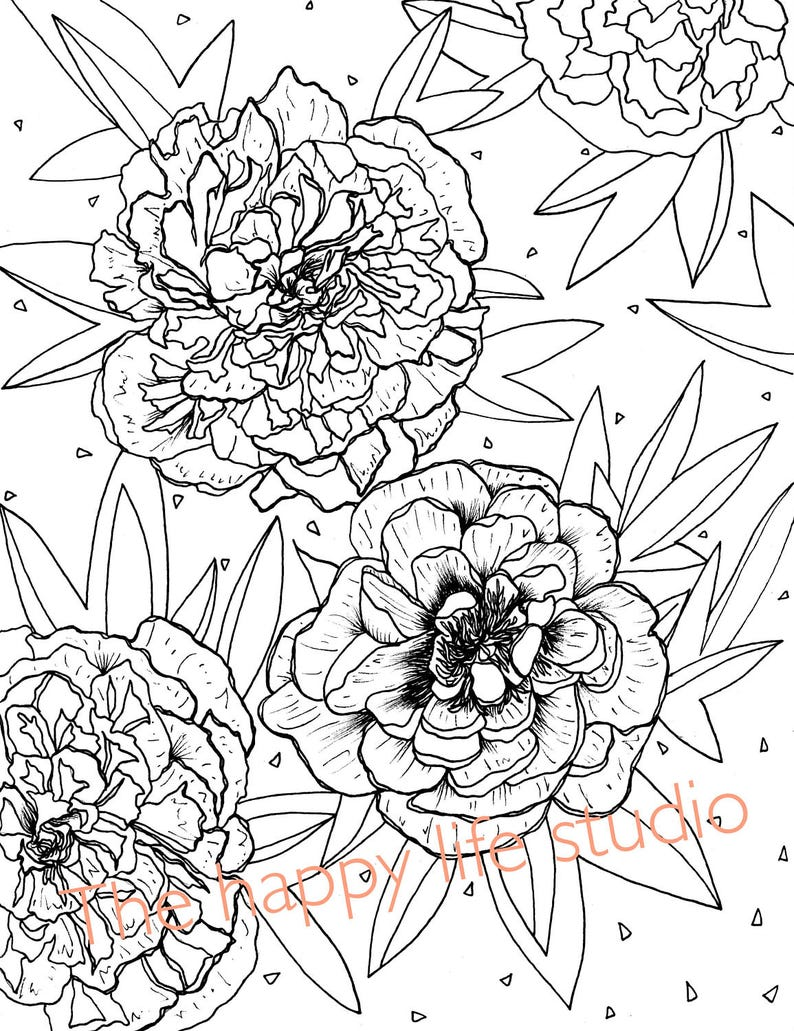 Peony Coloring Page Flower coloring page Peonies drawing | Etsy