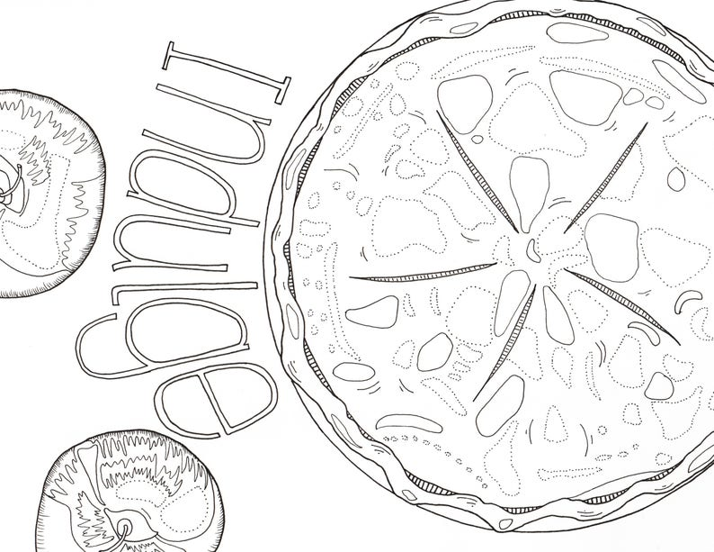 Apple Pie Coloring Page Thanksgiving Coloring Page Fall | Etsy