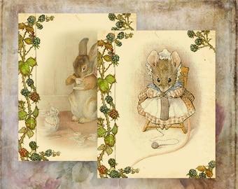 12 Beatrix Potter Papers