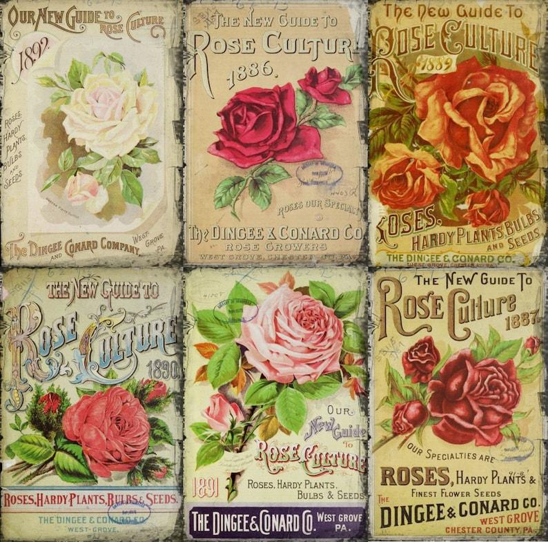 10 Vintage Rose Seed Pkt Tags