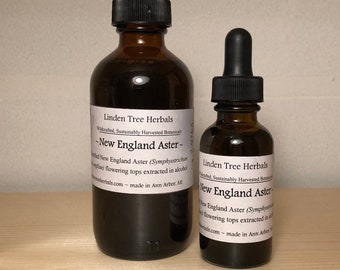 New England Aster Herbal Tincture // Wildcrafted, Sustainably Harvested, Botanical Extract