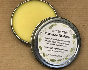 Cottonwood Bud Balm // Pain Relieving, Moisturizing Botanical Salve with Wildcrafted Cottonwood Buds