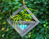 Modern succulent planter - Fabric reclaimed wood frame planter for air plants or succulents - Wall hanging - free hanging from ceiling