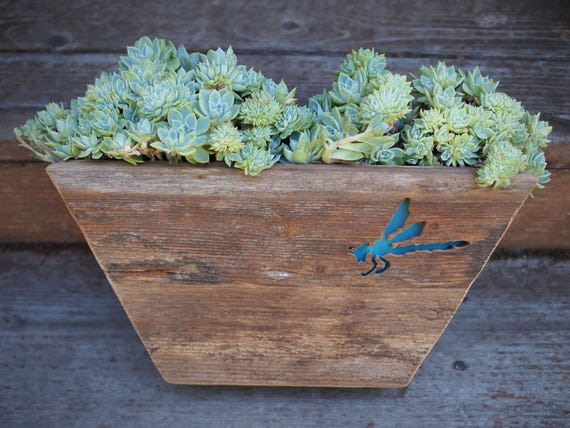 Dragonfly Wall hanging vertical garden repurposed fence board Succulent  Dish Garden planter - Perfect for succulents! reclaimed wood