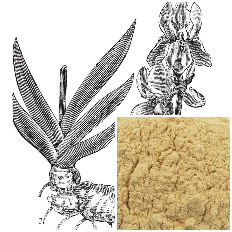 Orris root Powder, (peeled) soap making supplies, also for herbal extracts,  tinctures, teas, salves, creams, lotions or lip balms