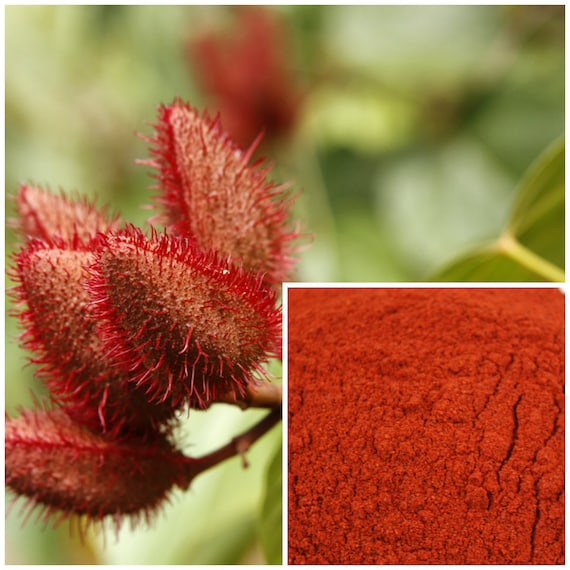 Annatto Seed Powder, soap making supplies, also for herbal extracts,  tinctures, teas, salves, creams, lotions or lip balms