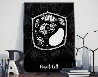 Back to school Plant Cell - black and white print, Little Biologist Set, back to school