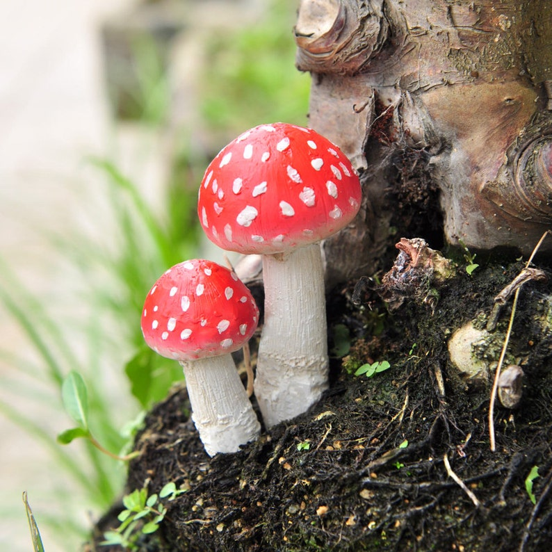 Accessories Mini Frog with Red Mushrooms Miniature Dollhouse FAIRY GARDEN
