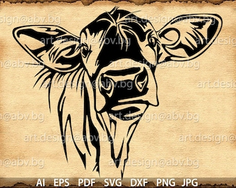 Vector COW, calf, head, AI, PNG, eps, pdf, svg, dxf, jpg Instant Download, Digital image, graphical image Art Print, muzzle, Printable