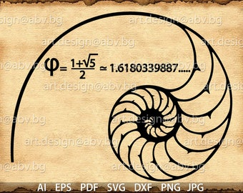 Vector FIBONACCI SPIRAL, golden ratio, AI, png, eps, pdf, svg, dxf, jpg Download files, Digital, graphical, discount coupons