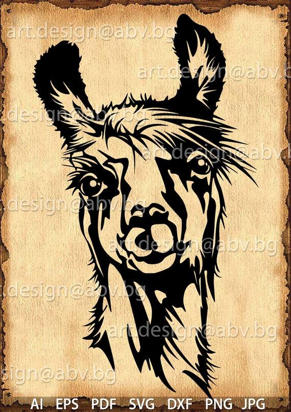 Vector Alpaca Lama Ai Eps Png Pdf Svg Dxf Jpg Download Files Digital Graphical Llama Discount Coupons