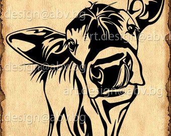 Vector COW, calf, head, AI, PNG, eps, pdf, svg, dxf, jpg Instant Download, graphical image Art Print, muzzle, tongue, Digital image