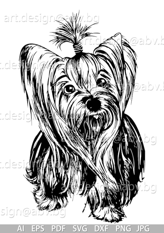 Vector Dog Yorkie Svg Ai Png Pdf Eps Dxf Jpg Download Etsy