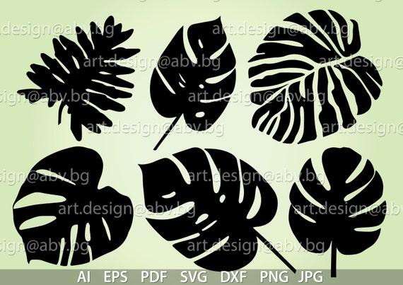 Vector Monstera Interior Plant Leaves Ai Eps Pdf Svg Etsy