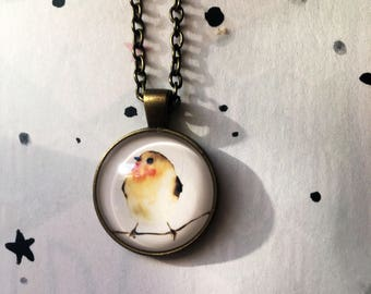 Robin Red Breast Bird pendant necklace