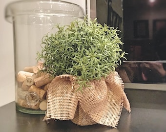 PERFECT PLANT | Fake | One (1) Artificial Potted Plant; Planter decoration; Fake plant