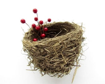 Real Found Bird Nest / Robin's Nest / Nature Find / Nature Home Decor / #112