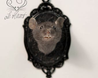 Taxidermy Mouse Head Mount - Black Mouse on Black Leather