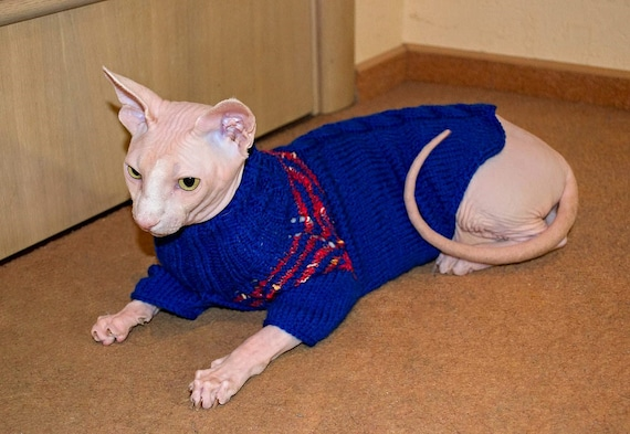 Bright Blue Sphynx Cat Sweater Blue Pets Wearing Pink Stripes Etsy
