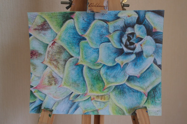 Watercolour and Biro Succulent Original Painting  8x10 inch  image 0