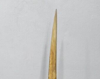 SwordFish Bill Sculpture Art Mounted Nautical Decor